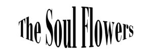 Vincent Boot The Soul Flowers
