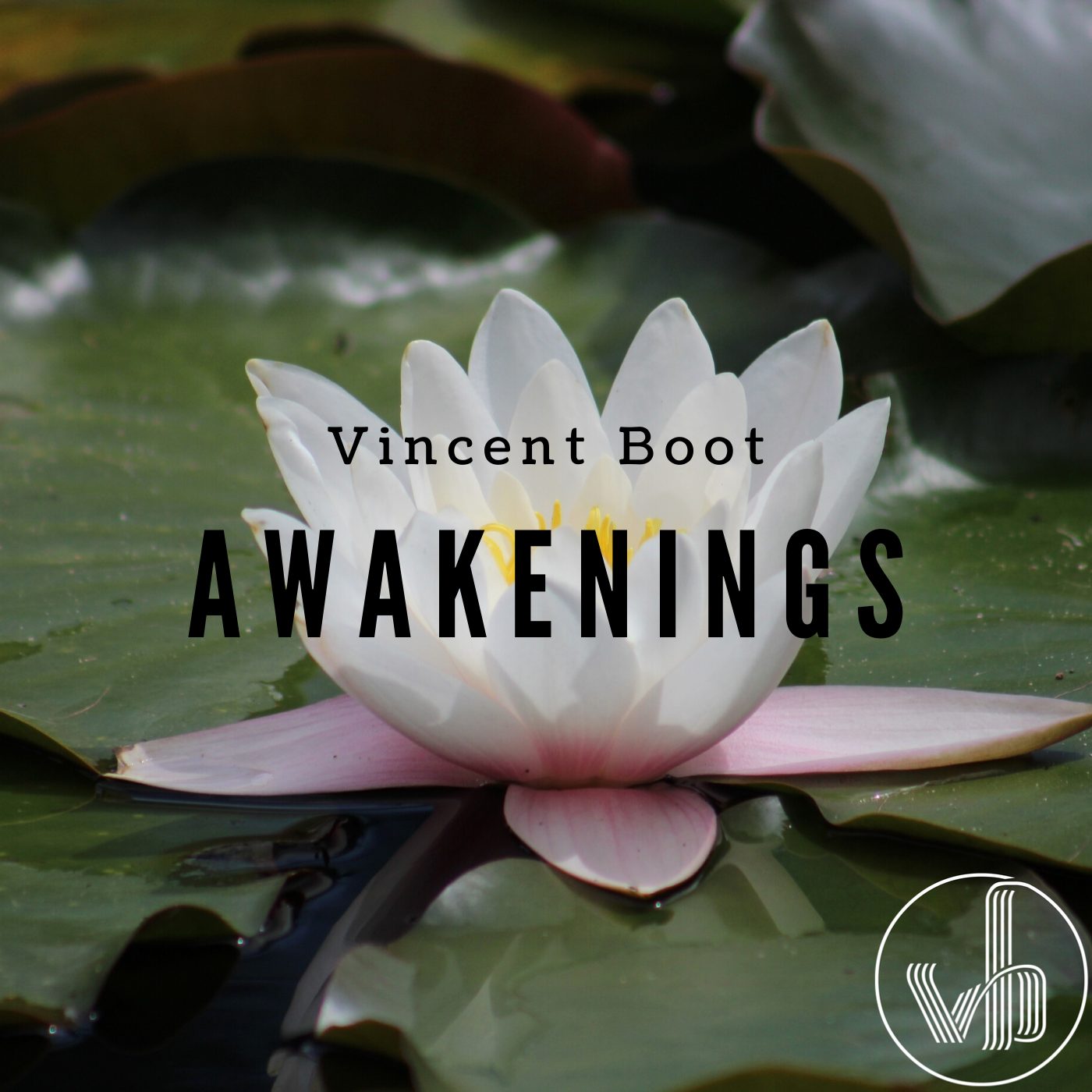 Vincent Boot - Awakenings