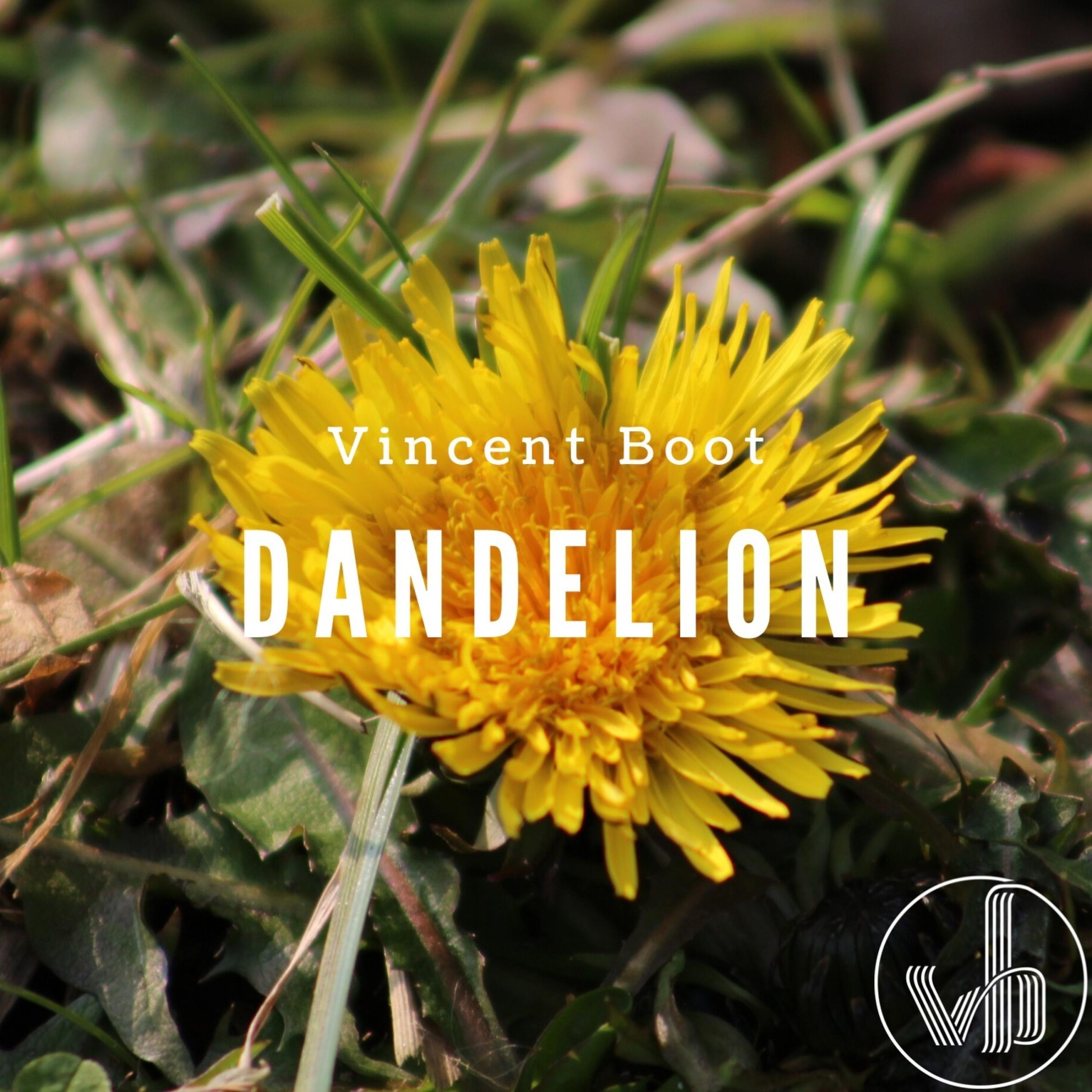Vincent Boot - Dandelion