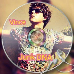 Vincent Boot - Junk DNA