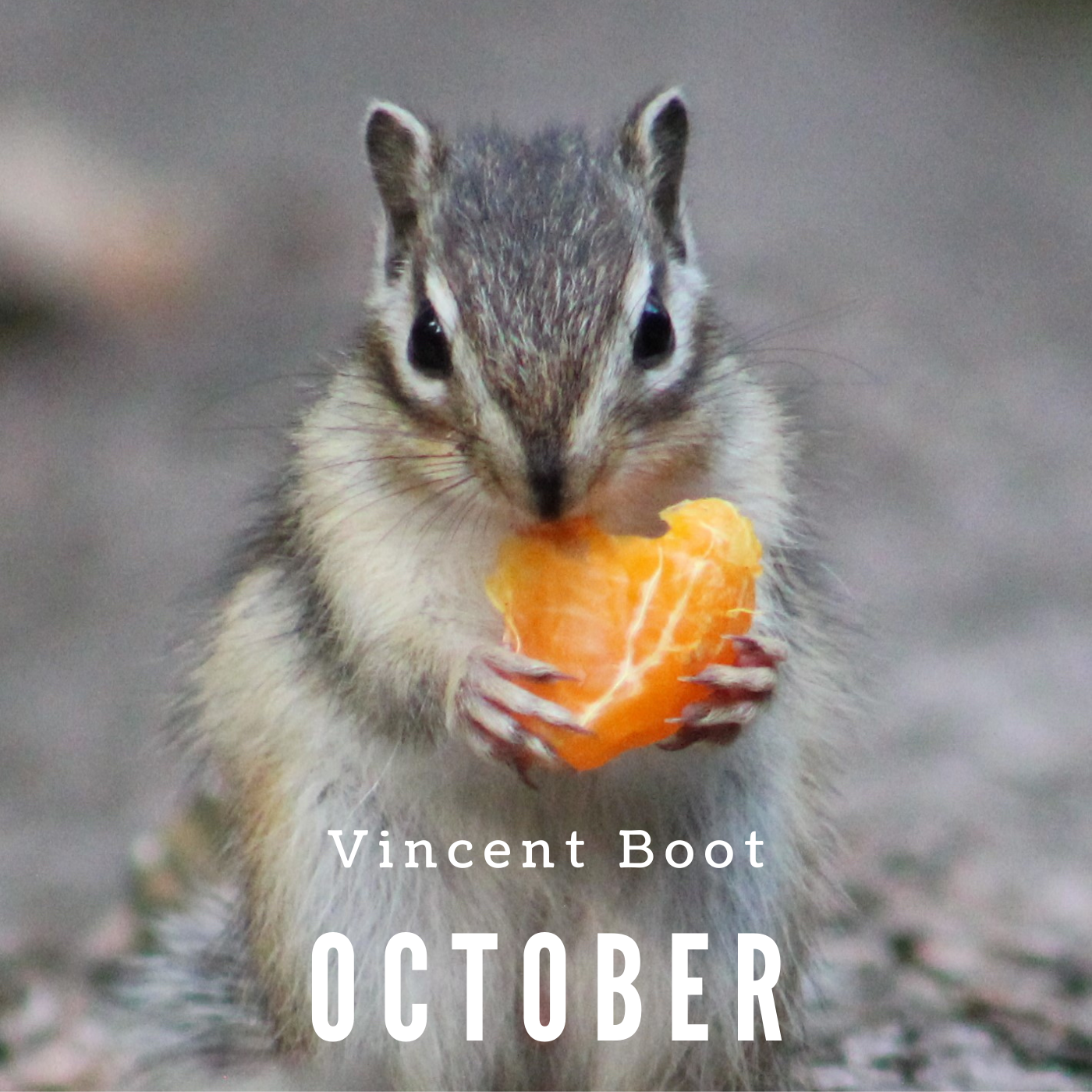 Vincent Boot - October